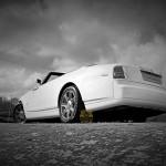 Rolls Royce Drop Head